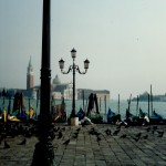 Row of Gondolas, Venice. I waited a long time for a break in the crowd.